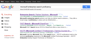 Ms_google_results